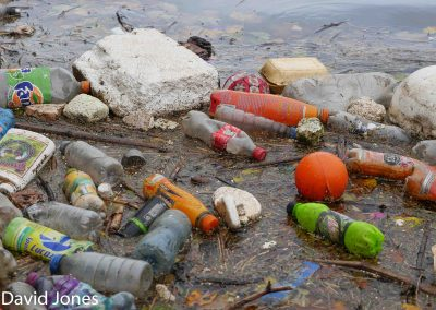 Plastic-pollution-floating-in-a-river