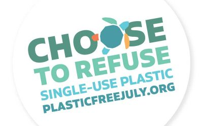 Plastic Free July: We're Halfway There